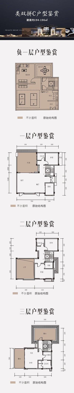 九龙坡区白市驿上邦高尔夫国际社区新房类双拼C户型户型图