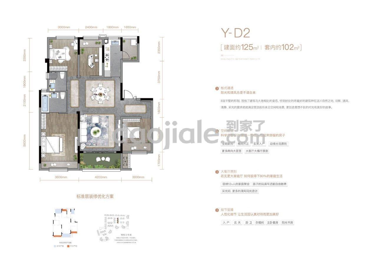 巴南区李家沱千江凌云新房Y-D2户型图