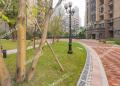 渝北区北部新区恒大照母山.山水城小区实景图-15