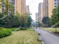 上城中央D区小区