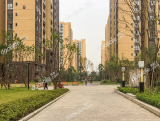 上城中央E区小区
