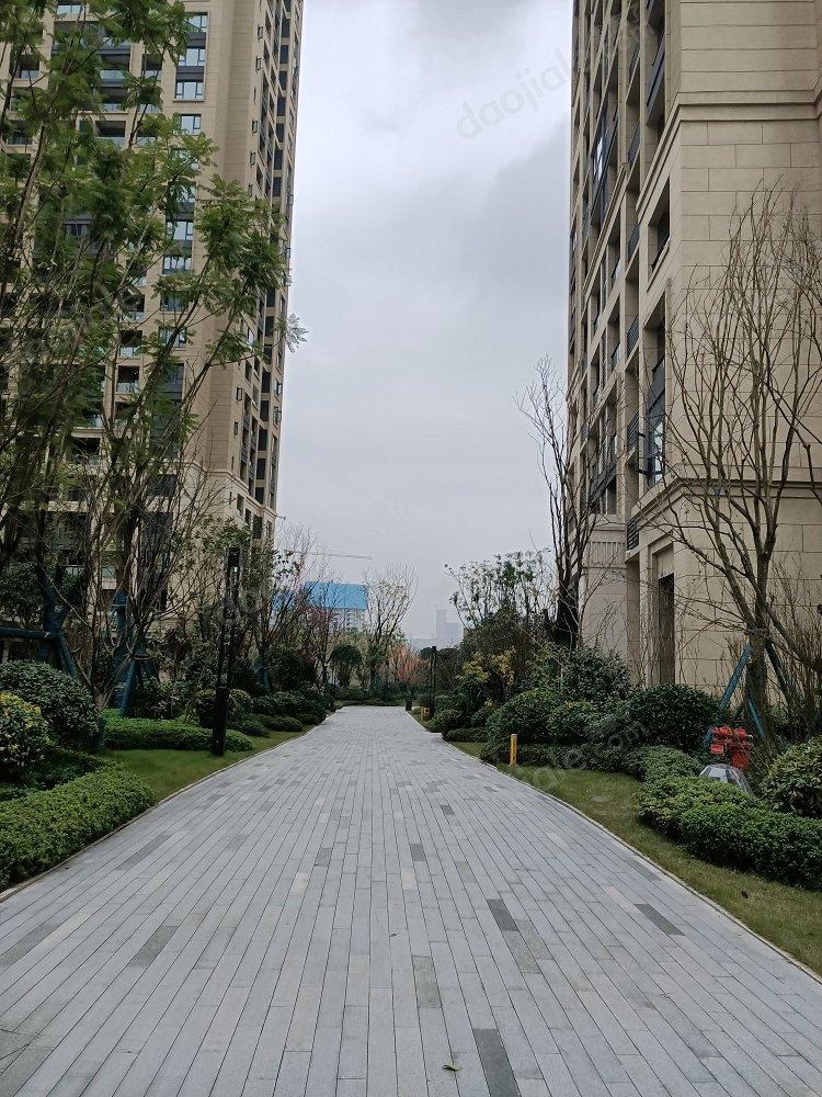 照母山 江山樾三期三房182万二手房图片图