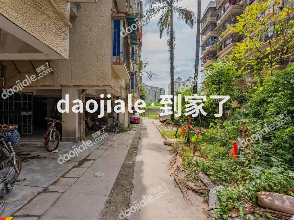 鼓楼区西环江滨福大怡园小区实景图-6